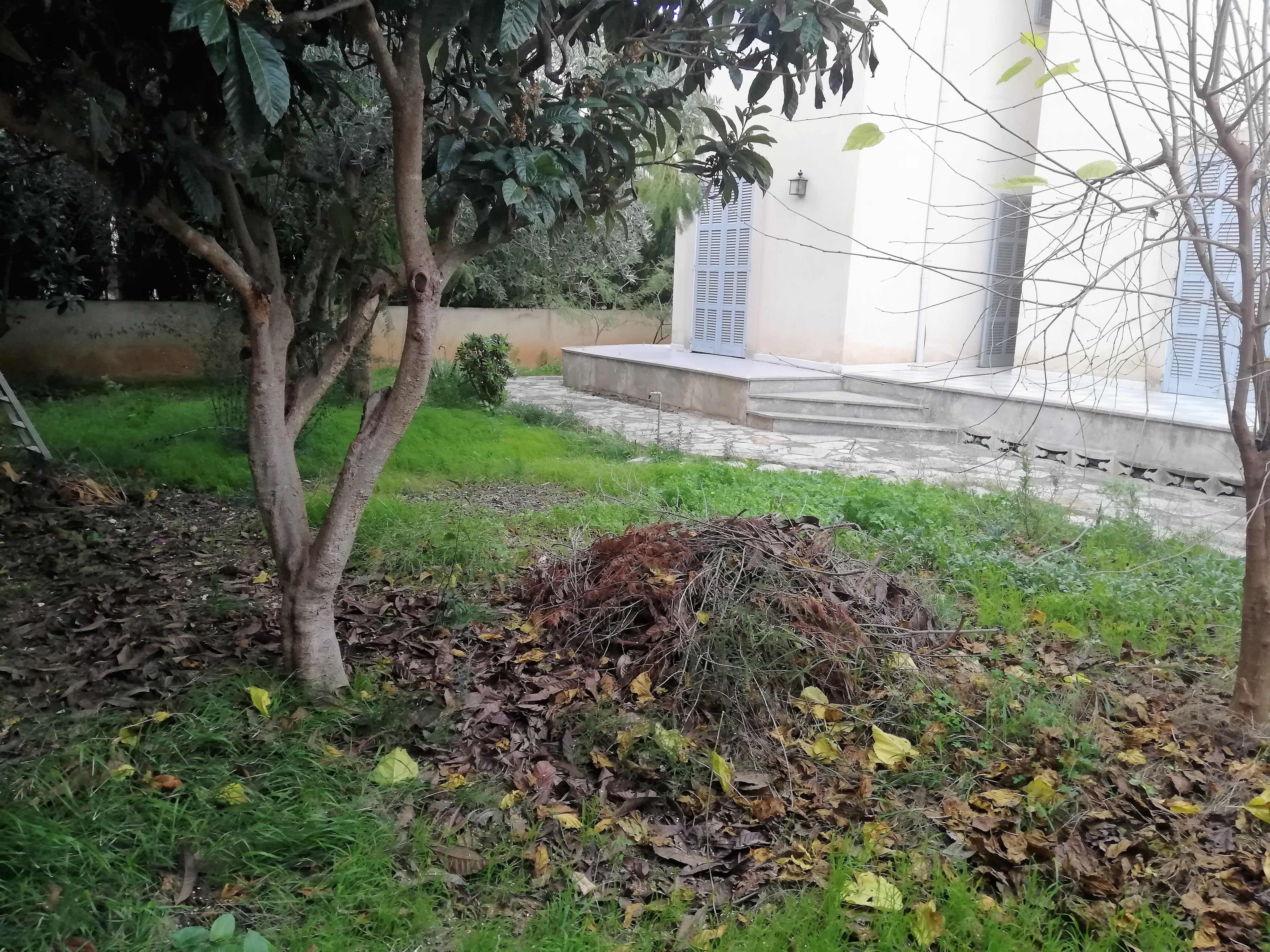 Planta baja 162 m2 + jardin y terrazas en Manacor. Ref. 2007